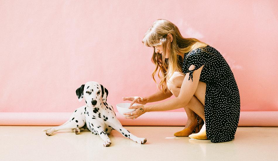 publicidad online veterinaria
