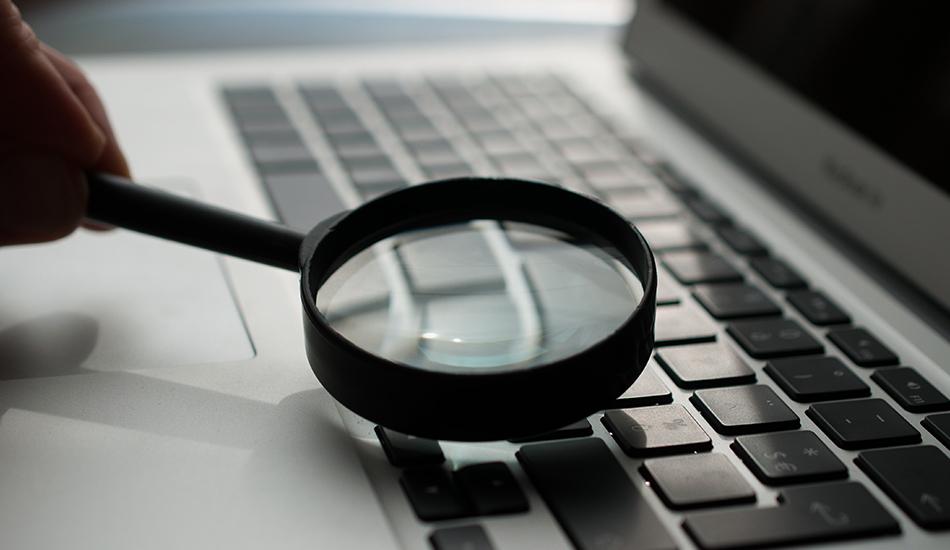 campaña de red de búsqueda